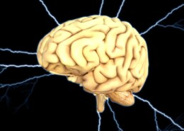 Why Humans Cannot Use 100% Of Their Brain?