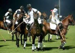 What Is It About The Polo Game?